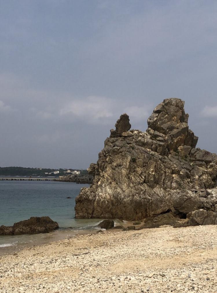 沖縄本島北部のゴリラチョップ